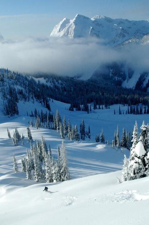 Mustang Powder - största genomsnittliga snöfall / säsong för någon kattskidåkning i världen.