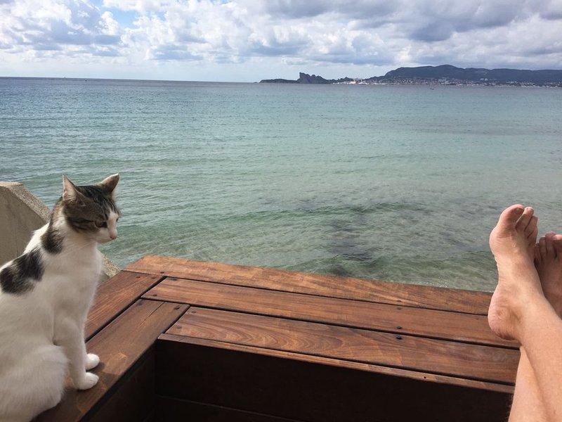 Maison pieds dans l 'eau dans le prolongement de la plage des Lecques ., location de vacances à Saint-Cyr-sur-Mer