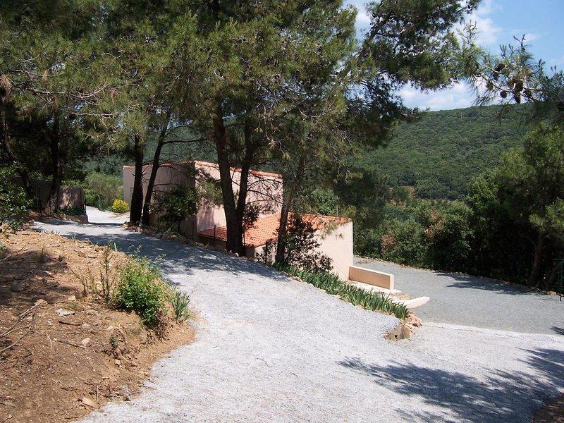 maison avec piscine dans un joli hameau au milieu de pins,chênes verts..., location de vacances à Saint-Chinian