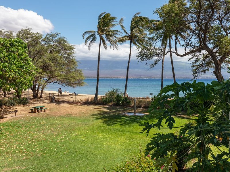 Maui Split System A/C sleep comfy and cool. Right On The Beach and Only Steps To, alquiler vacacional en Maalaea
