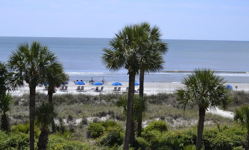 3 BR w/Direct Ocean Front View; Don't Wait!  Only 2 Spring/Summer Weeks Left!, holiday rental in Hilton Head