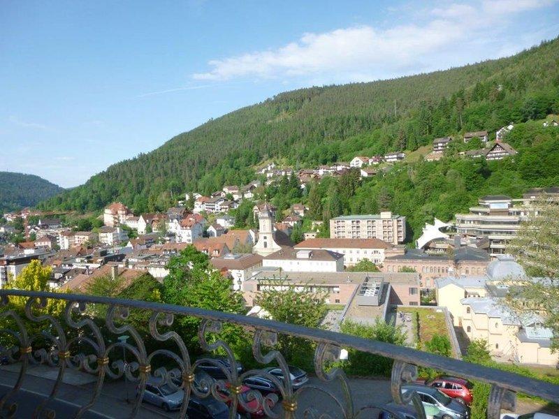 Ferienwohnung Saline, (Bad Wildbad), LHS 05445