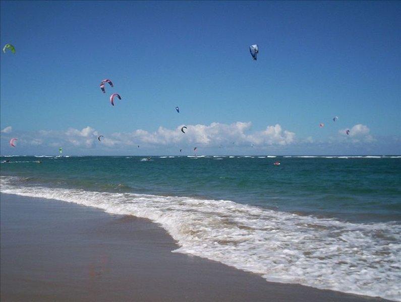 Playa Neaby Kite