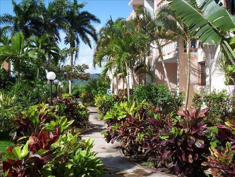Jardín camino al apartamento