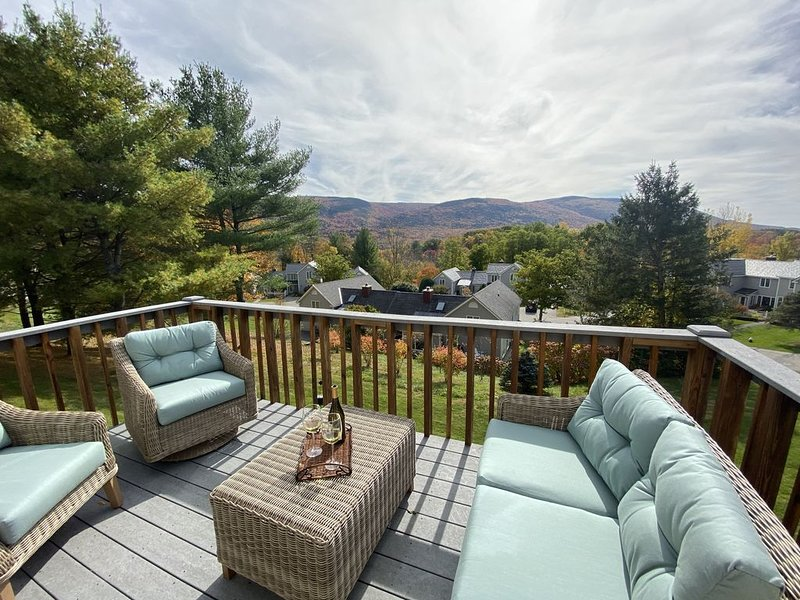 NEW large condo Southern VT Gorgeous mountain views 4bdr 3bth, wifi,central air, holiday rental in Arlington