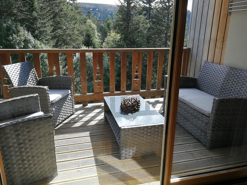 CHALET DUPLEX 3 CH PIED DE PISTE , CENTRE STATION, PARKING , WIFI, casa vacanza a Cantal