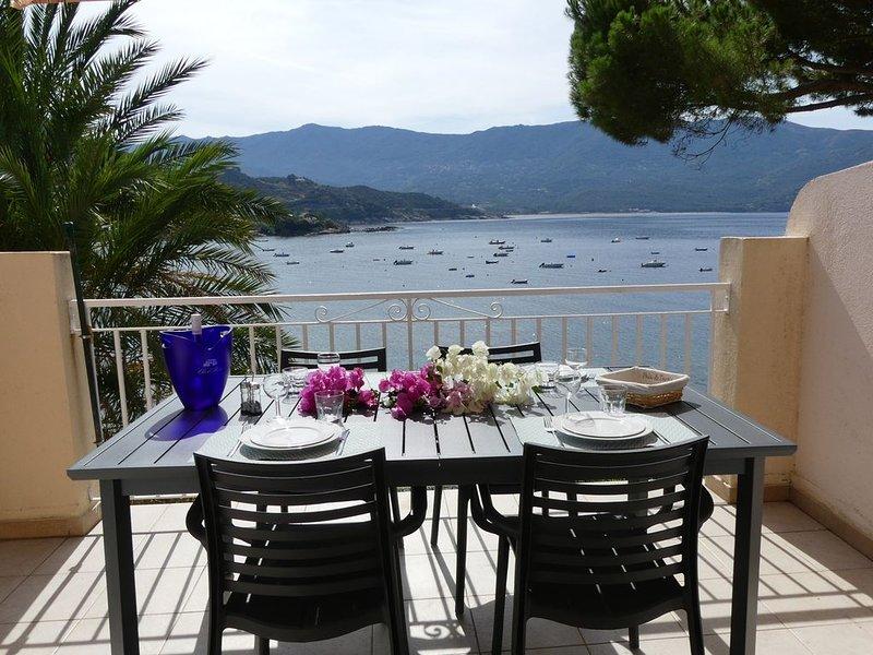 Appart  (3 pièces) vue imprenable 'pieds dans l'eau'    N°2  cap. 4 à 6 pers, holiday rental in Casaglione