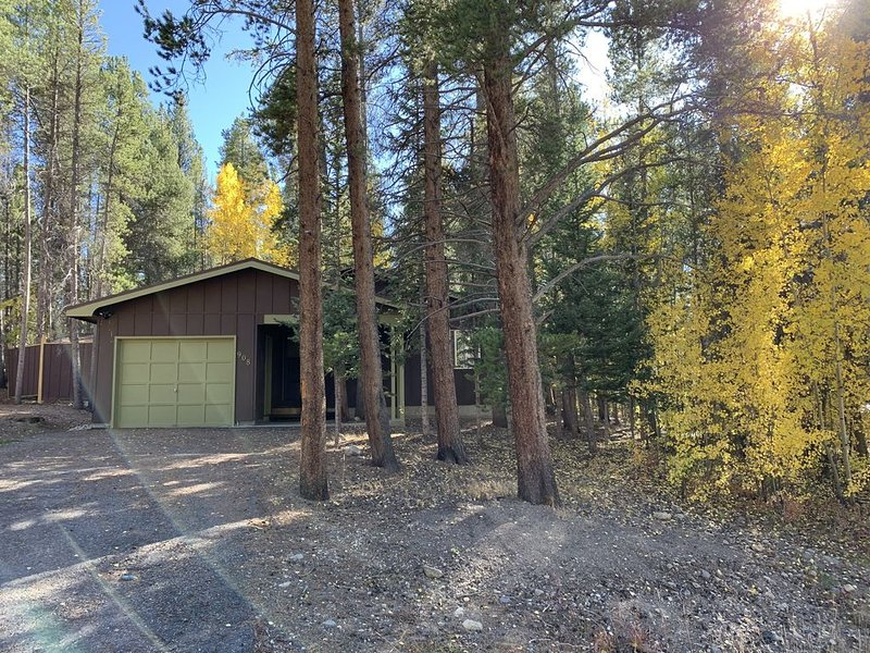 Nestled In The Pine Trees Between Downtown Leadville And Turquoise Lake 3Bd 2Bth, holiday rental in Leadville