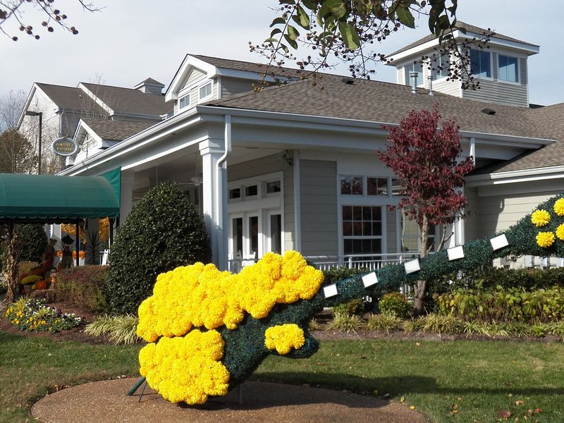 WEEKLY DISCOUNT Near Grand Ole Opry &  Downtown. Shuttle takes you to it all!, vacation rental in Nashville