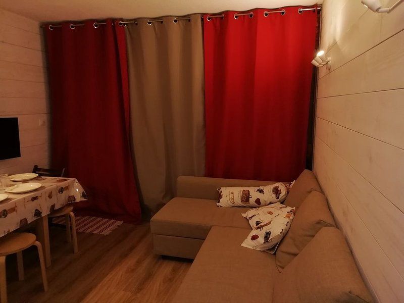 Appartement T2/6 personnes , Salon face aux pistes, garage, cave., location de vacances à Gourette