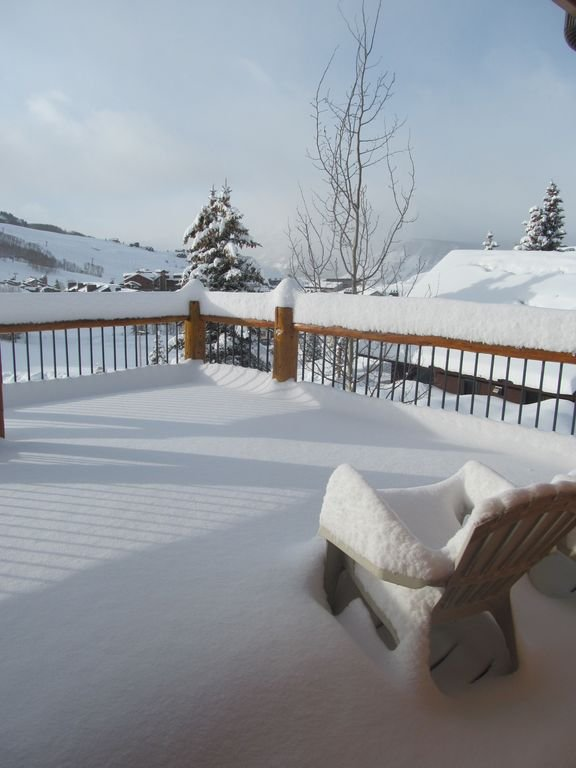 View from Kitchen slider door in winter. *note we do remove snow for guests.