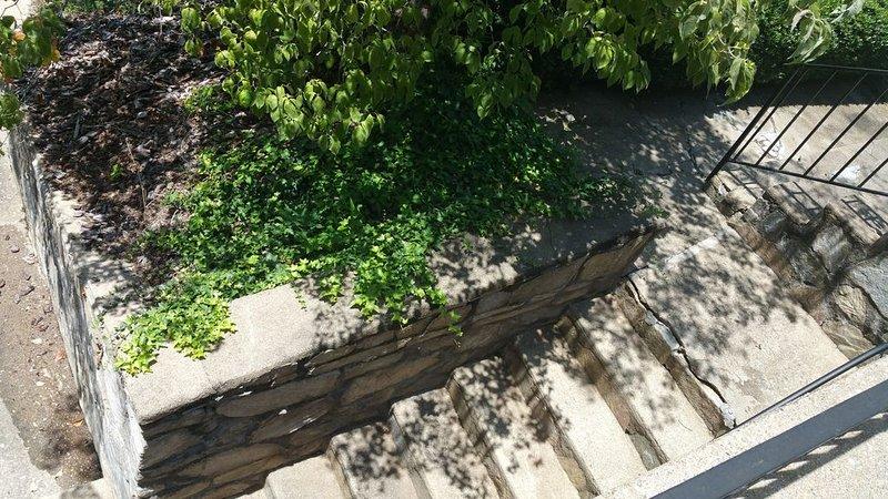 Vue d'ensemble des marches qui mènent de l'allée à la maison
