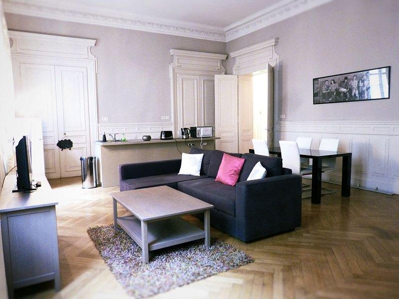 Haussmann, appartement en  hyper centre, vacation rental in Saint-Etienne