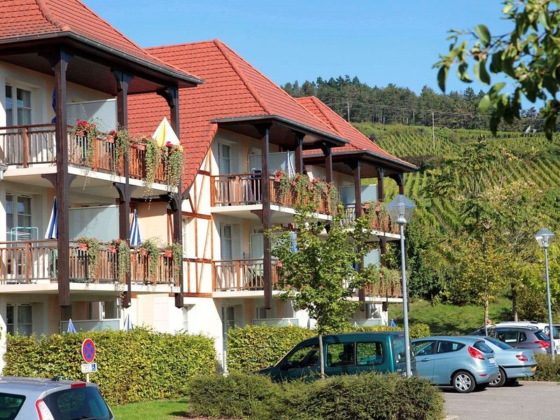 Picturesque apartment with a dishwasher on a quiet place., holiday rental in Bergheim