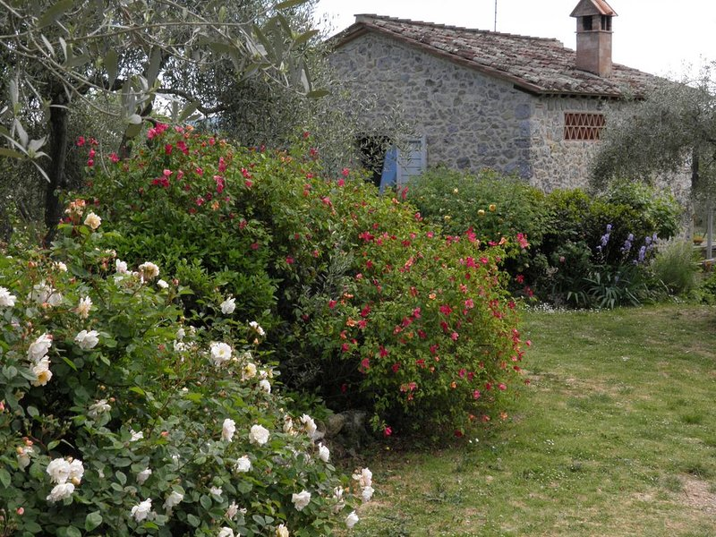 la Capanna dello Spadini, holiday rental in Tognazza
