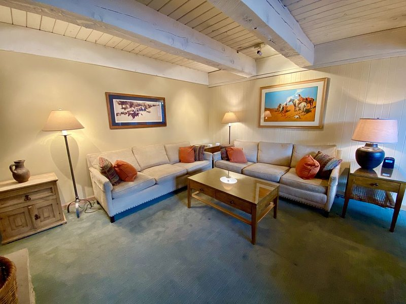 Best deal in Aspen! Large Duplex, Top Floor, Riverfront, Views, Up to 45% OFF!, holiday rental in Aspen