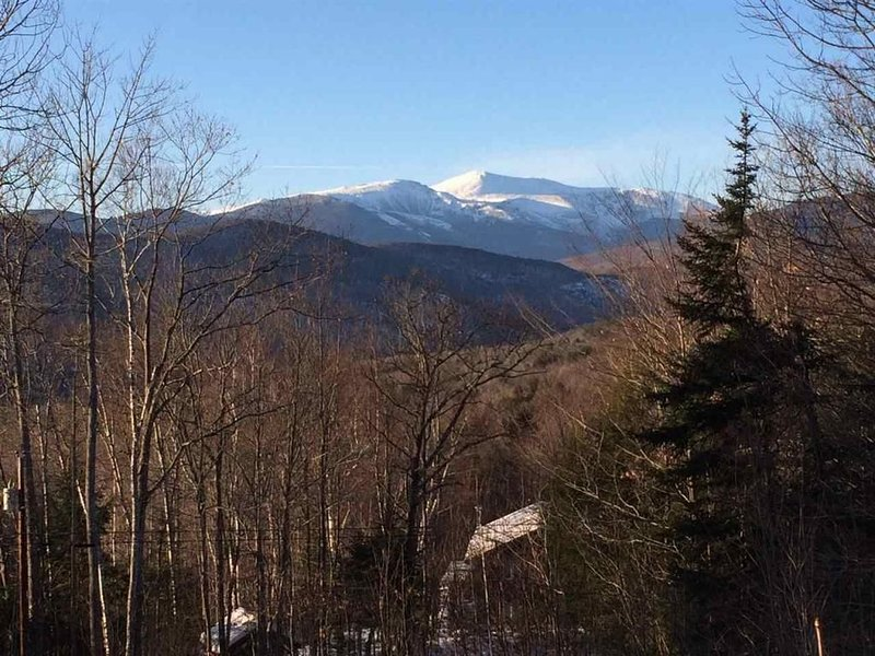 EVERY Room with a View! Two King Bed Master Suites! Quintessential Jackson, NH!, casa vacanza a Jackson