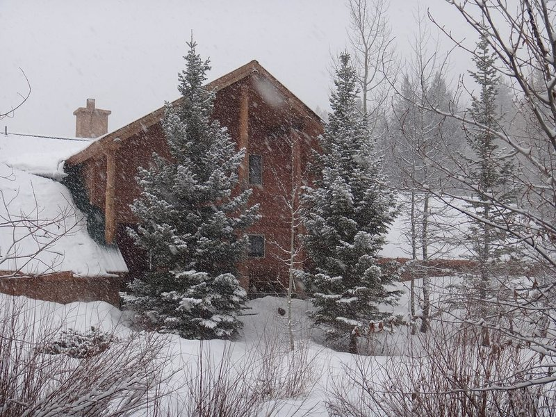 Family Home on Private Lake near Purgatory Ski Area - Create Family Memories, holiday rental in Durango Mountain