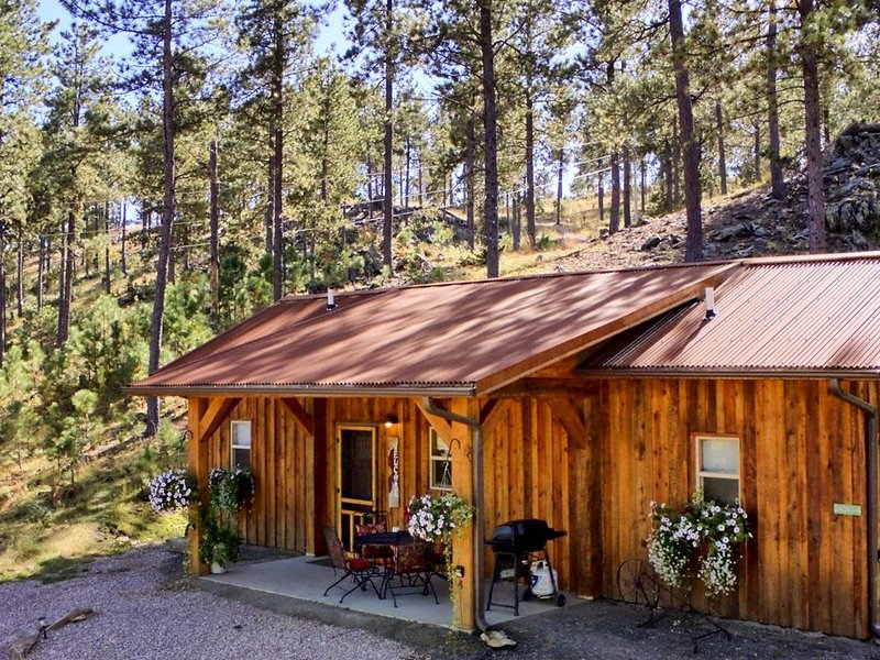 Peaceful custom Black Hills cabin near Mt Rushmore, hiking, lakes & attractions., holiday rental in Keystone