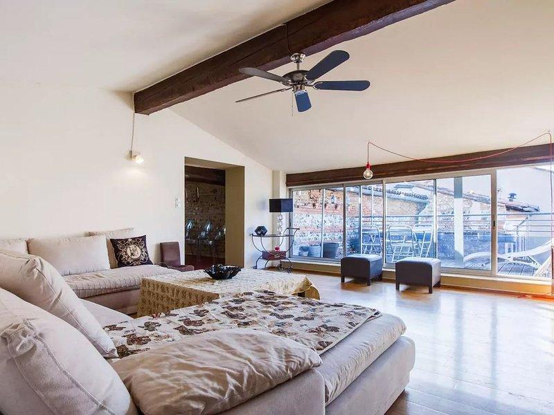 Le Comédien - magnifique et spacieux pour 6 personnes, location de vacances à Labarthe-sur-Leze