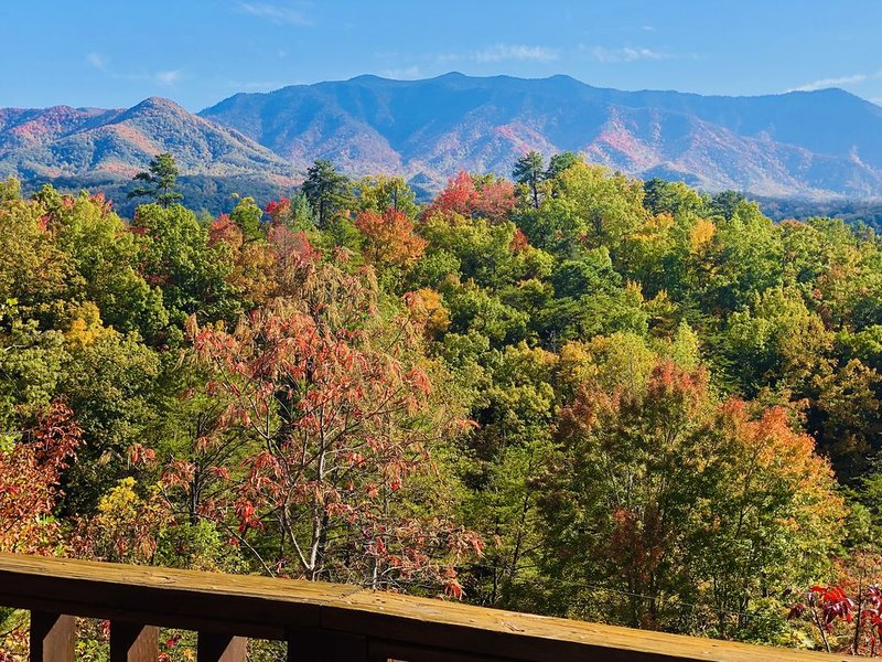 Spectacular views from deck and cabin