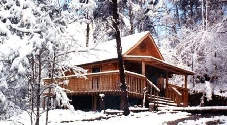 Free Smoky Mountain Horse Ride with Cabin on Horse Ranch, holiday rental in Maryville