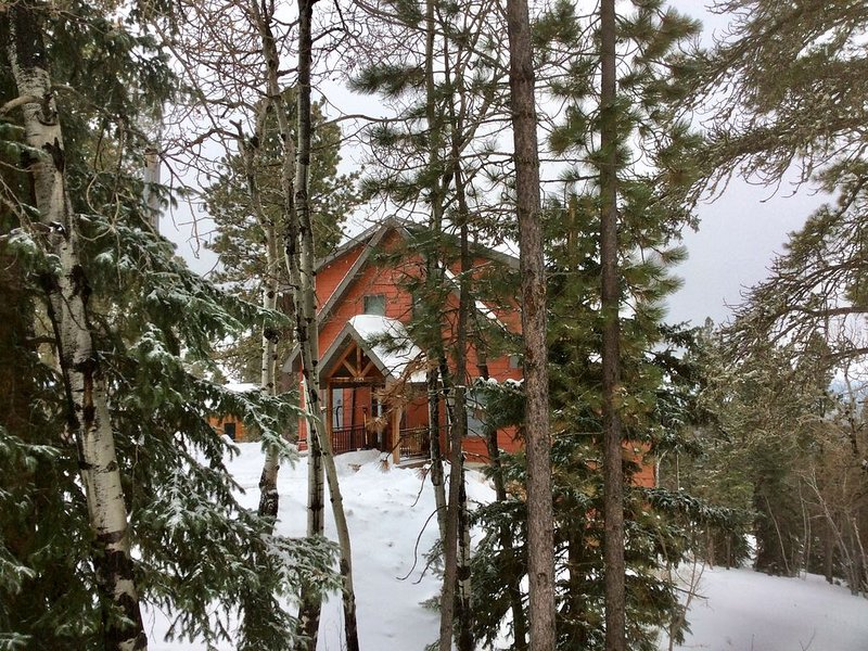 Cabin in the Pines ~ 2500 Sq. Ft. Charming Cabin 3 Levels, 4 Bedrooms & 3 Baths., holiday rental in Lead
