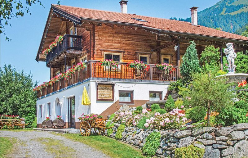 1 bedroom accommodation in St. Gallenkirch, holiday rental in Sankt Gallenkirch