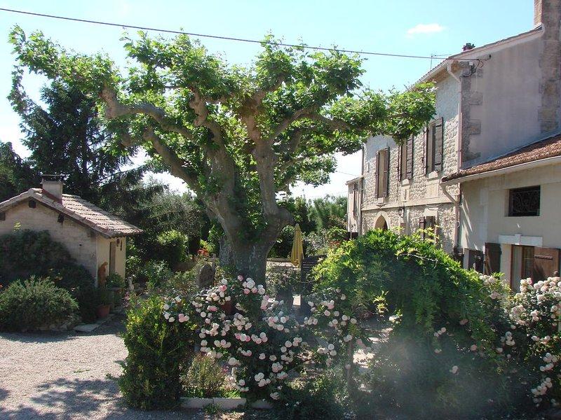 Gîte en Provence attenant à un Mas du 19ième à Tarascon, location de vacances à Tarascon