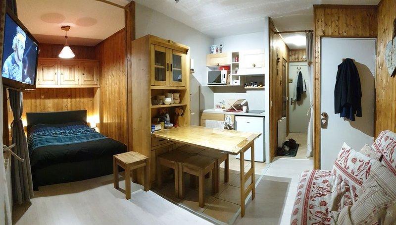 Le veneon 4 a 6 personnes pistes à 2 mn, holiday rental in Mizoen