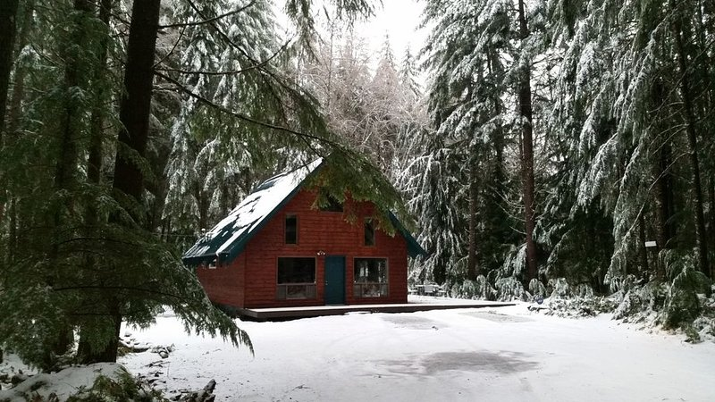 Crystal Mountain Cozy Cabin, holiday rental in Greenwater