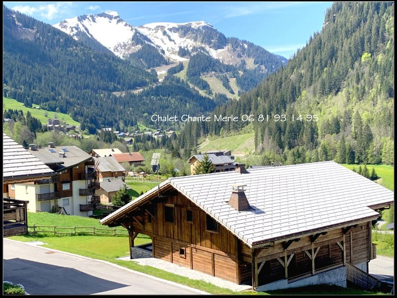Chalet de prestige - PROMO JUILLET 2240€ AU LIEU DE 2800€, vacation rental in Chatel
