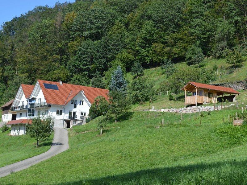 Ferienwohnung im Herzen des Renchtals Fewo 2, aluguéis de temporada em Oberharmersbach
