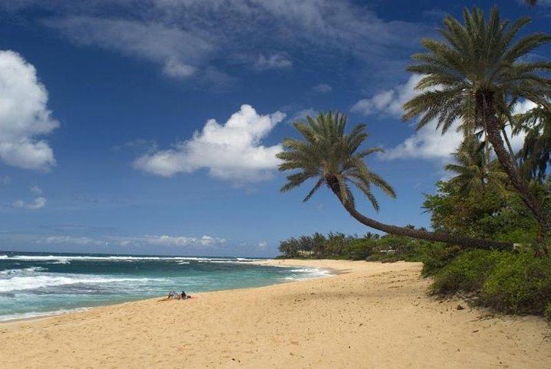 50 yards to beach - Perfect for families! Sunset Point neighborhood, alquiler de vacaciones en Pupukea