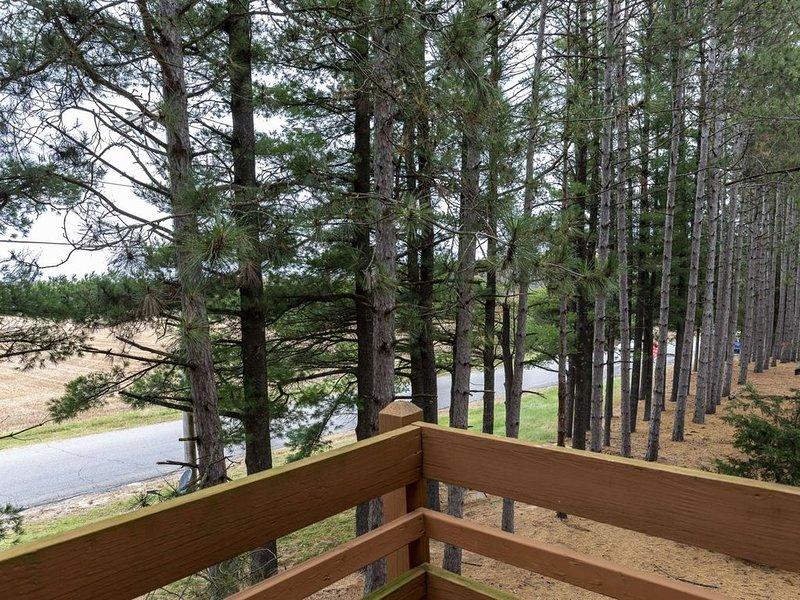 Ski/Relax-Bluegreen Christmas Mt.-WI Dells-Family Fun Townhouse-Winter Wonderla, holiday rental in Wisconsin Dells