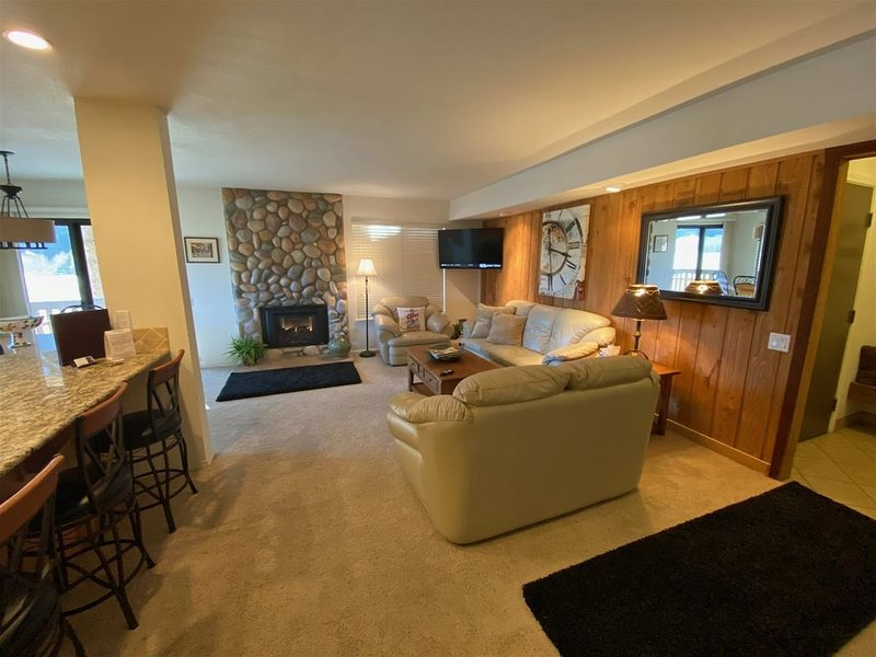 Hot Tub, Pool, Spa, Common Game Room, 10 minute Walk to Town & Lifts #137, holiday rental in Ketchum