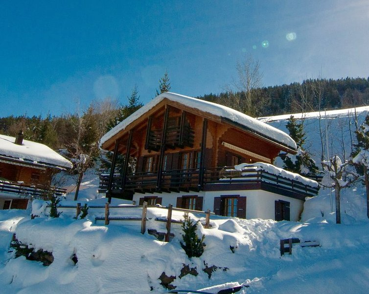 Chalet Lisa, ski-in/out, accessible by car, vacation rental in Nendaz