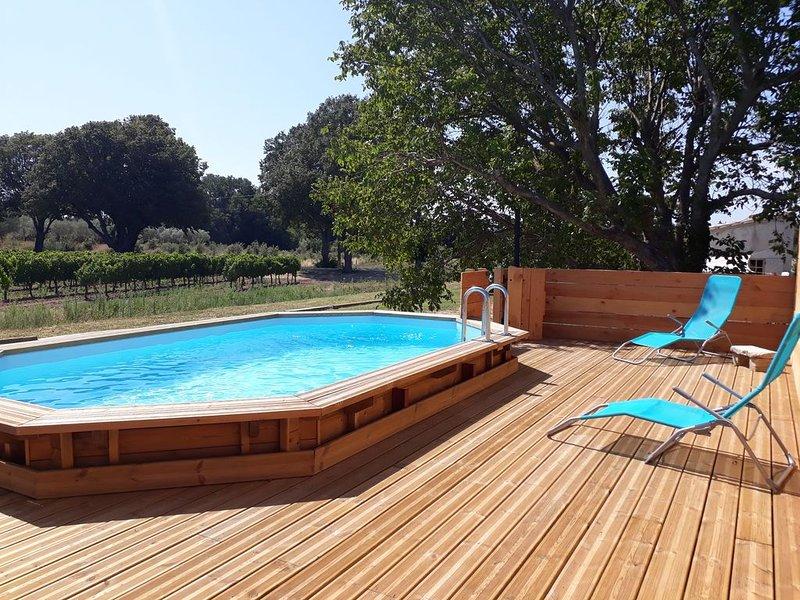 La Petite Maison Dans les Vignes avec Piscine, casa vacanza a Reauville