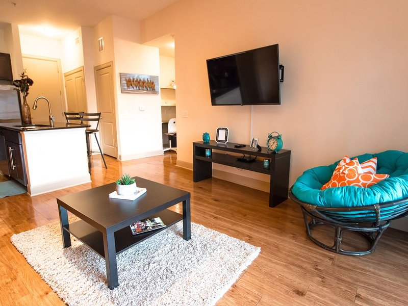 Houston | Cozy | Modern Apt w/Pool View | NRG | Med Cntr, holiday rental in Houston