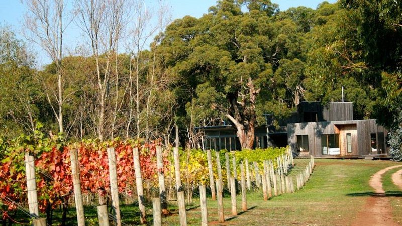 Vigneron's Delight - Set back overlooking the vines & enjoy a hit of tennis!, holiday rental in Red Hill