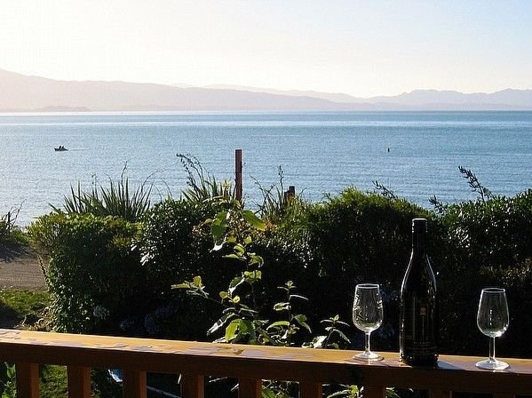 Treed -  Golden Bay Bach (Tata Beach), vacation rental in Collingwood