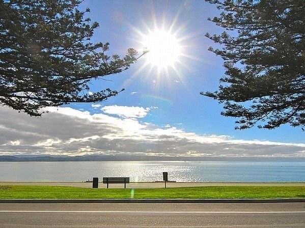Napier Sea Views - Napier (Ahuriri) Holiday House, holiday rental in Napier
