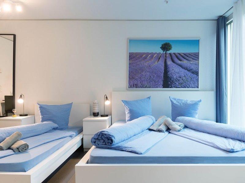LU Gletschergarten II - Allmend HITrental Apartmen, alquiler vacacional en Hergiswil