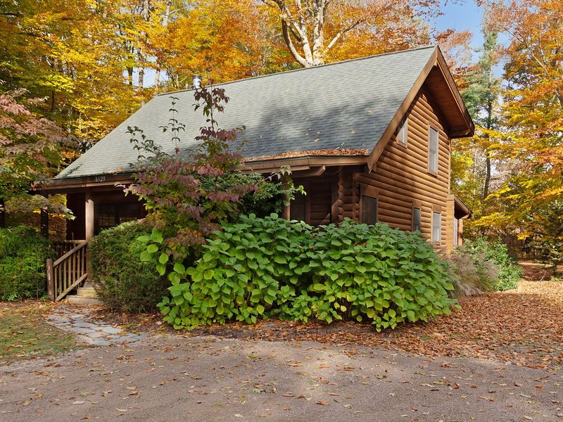 Woodsy cabin with private hot tub, shared beach access & screened porch, vacation rental in Saugatuck