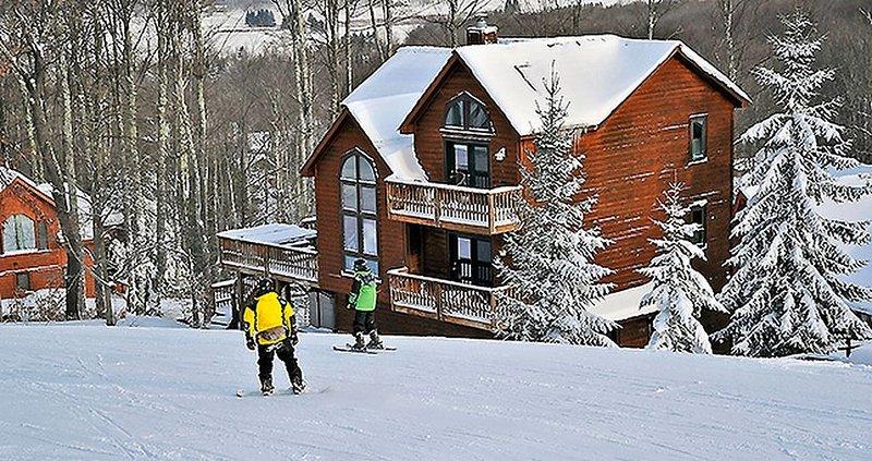 Fabulous Mountainside Get-a-way! Mountain Near House/Slopeside/330 Slopeside Rd., holiday rental in Davis