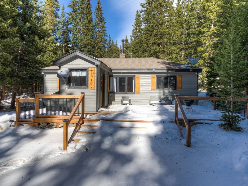 Lakefront cabin nestled in the mountains, vacation rental in Dumont