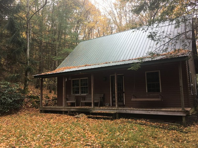 Cozy cabin, great for family and friends!, location de vacances à Milton