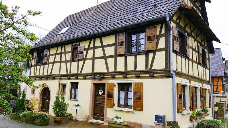 GITE ROMANTIQUE 4 PERSONNES A L'ETAGE+COMBLES D'UNE MAISON ALSACIENNE RENOVEE, holiday rental in Oberbronn
