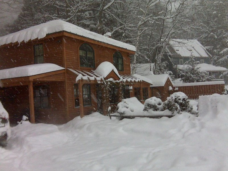 Adorable, cozy lakeside cottage 5-min from Okemo – semesterbostad i Ludlow
