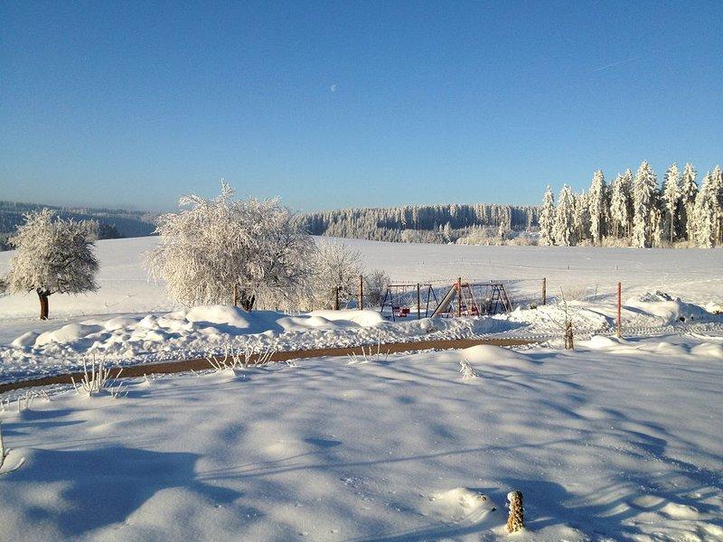 Kammererhof-Oberkirnach, (St. Georgen), LHS 03723-Ausblick Winter